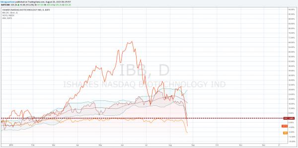 grafico cina IBB e IWV russel 3000